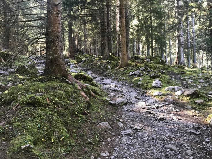 Hike to Truebsee